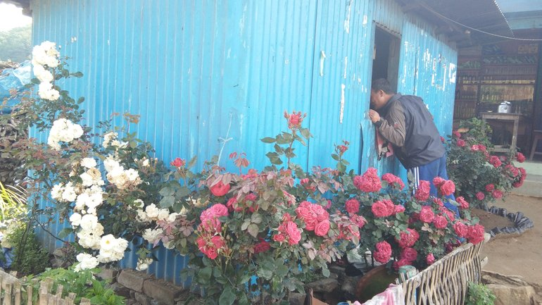 Rose gardens and colorful houses are everywhere in Eastern Nepal
