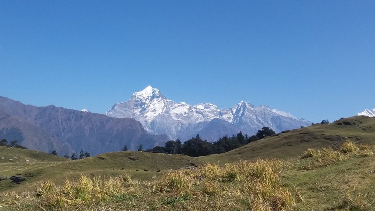 Dronagiri Peak from Gurson bugyal.
