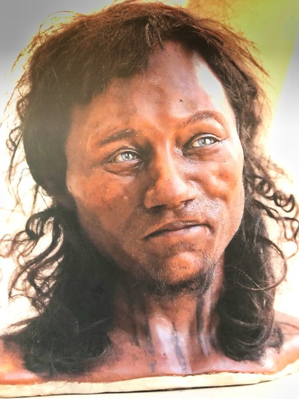 A re-creation of what Cheddar Man would have looked like from his skeleton