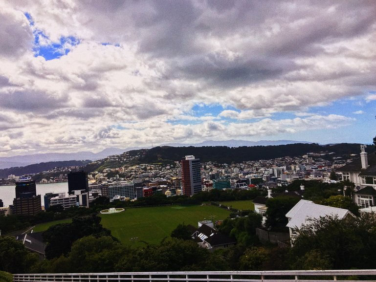 View of Wellington City from the Botanical Gardens