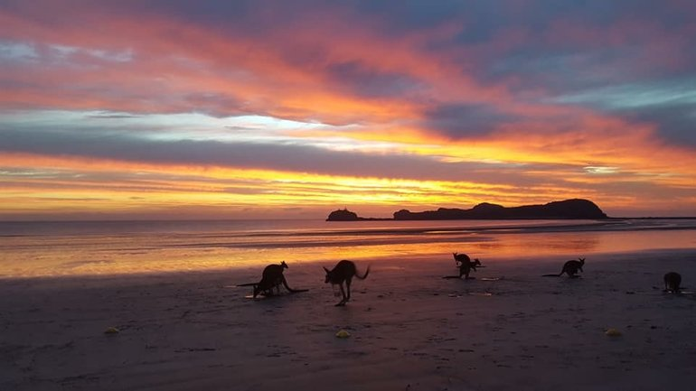 Cape Hillsborough Sunrise