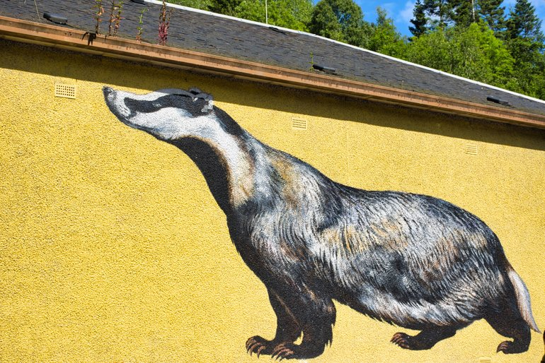 The Badger on the side of the Hydroelectric Power Station wall