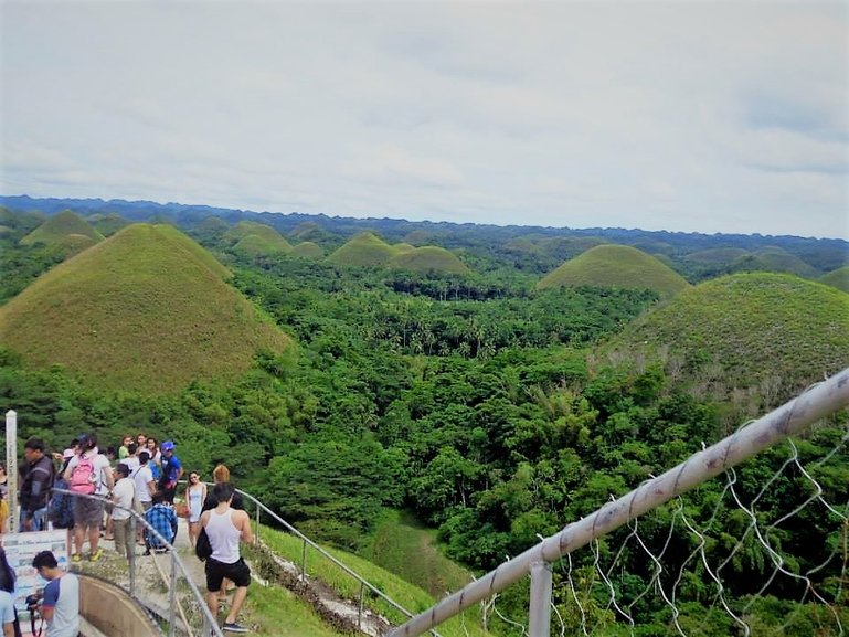 View from Chocolate Hills Viewing Deck
