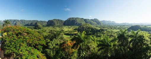 Enjoy a Visit to Vinales!