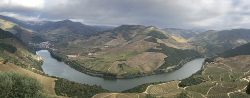 Experiences in Douro Valley