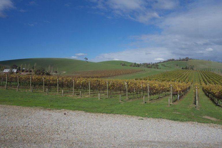 Soumah of the Yarra Valley views