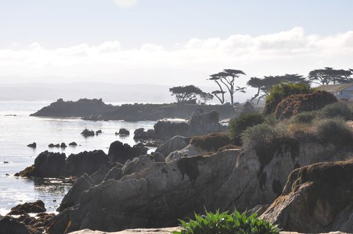 Five Things to do on Monterey Peninsula (for Non-Golfers)
