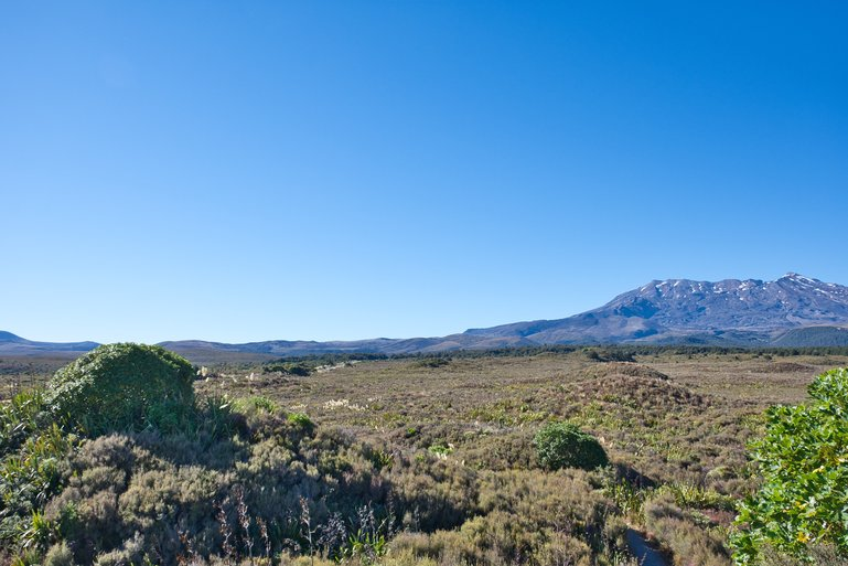 The view from the lookout looking over the mounds and Mt. Ruapehu