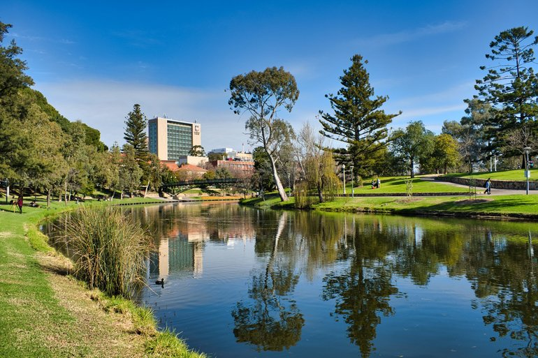 Walking paths lead you back into the city centre alongside the River Torrens