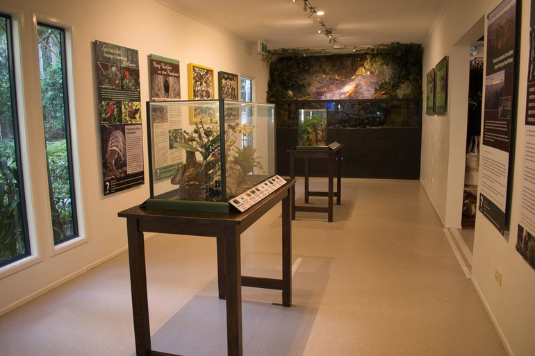 In the Eco Gallery, you will find information about the flora and fauna in this area