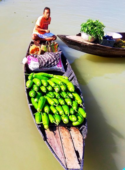 A vendor taking his vegetable (bottle gourd) to the floating market