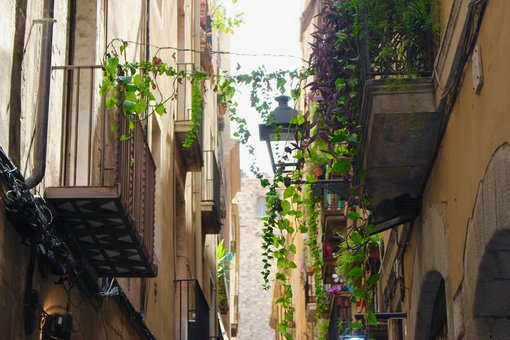 A culinary day in Barcelona
