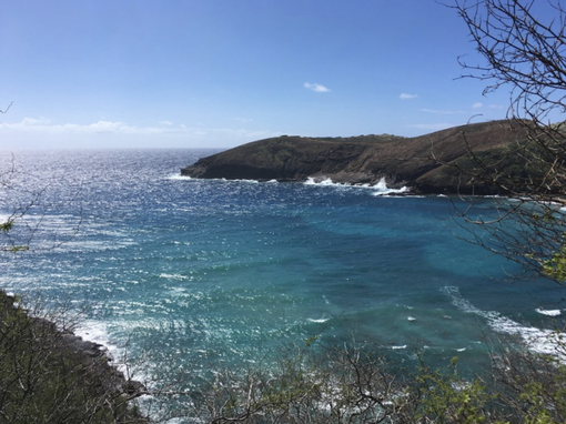 The Best of Oahu