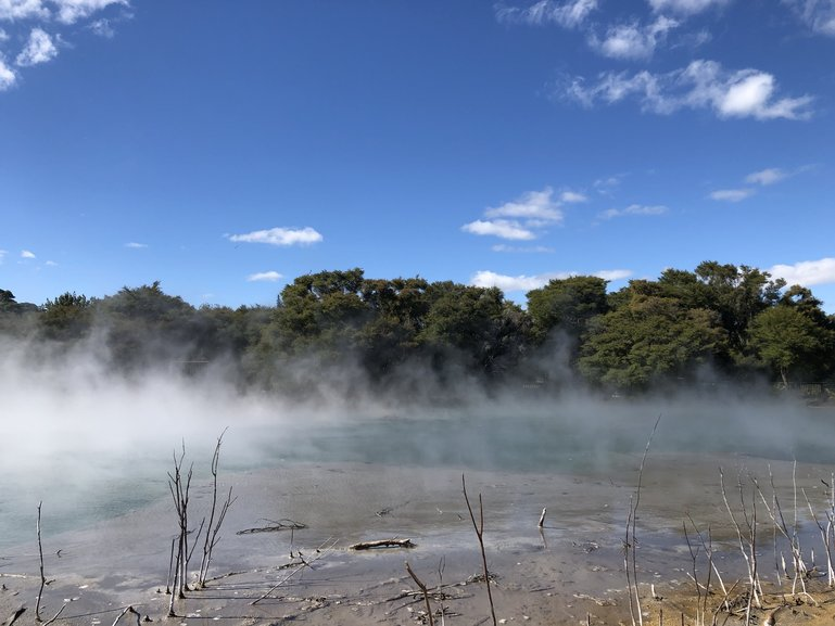 The steaming waters of Lake Kuirau in Kuirau Park