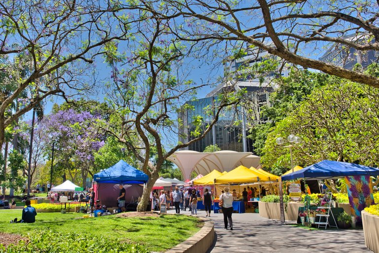 Brisbane City Markets on Thursday are held under the trees of Cathedral Square