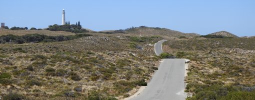 Top 10 Things to See & Do at Rottnest Island, Western Australia
