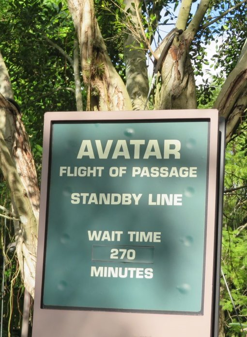 How to navigate the Avatar ride at Disney's Animal Kingdom