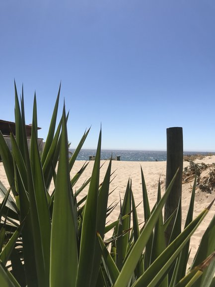 Caparica's stretched beaches