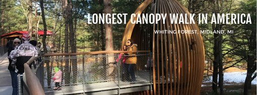 Visiting the Longest Canopy Walk in America