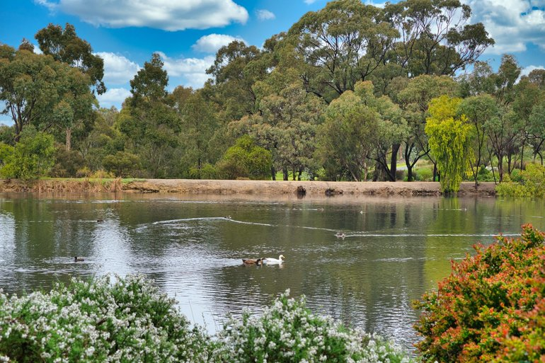 Waterbirds are only one type of wildlife that you'll find in these gardens