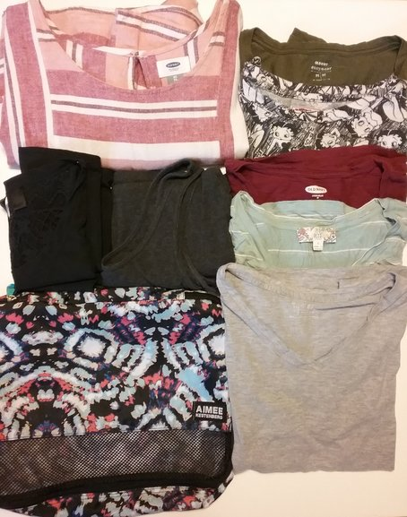 That's 5 t-shirts, 2 tank tops and a dress that all fit in a medium packing cube (14 inches by 10 inches by 3 inches)