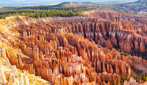The Hoodoos of Bryce Canyon Utah