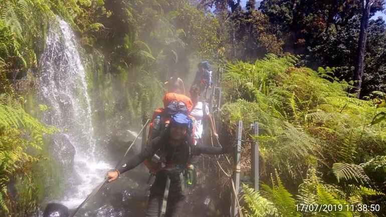 Tropical Rain Forest Mount Gede Pangrango West Of Java