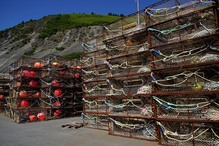 Crab pods in Kodiak Harbor