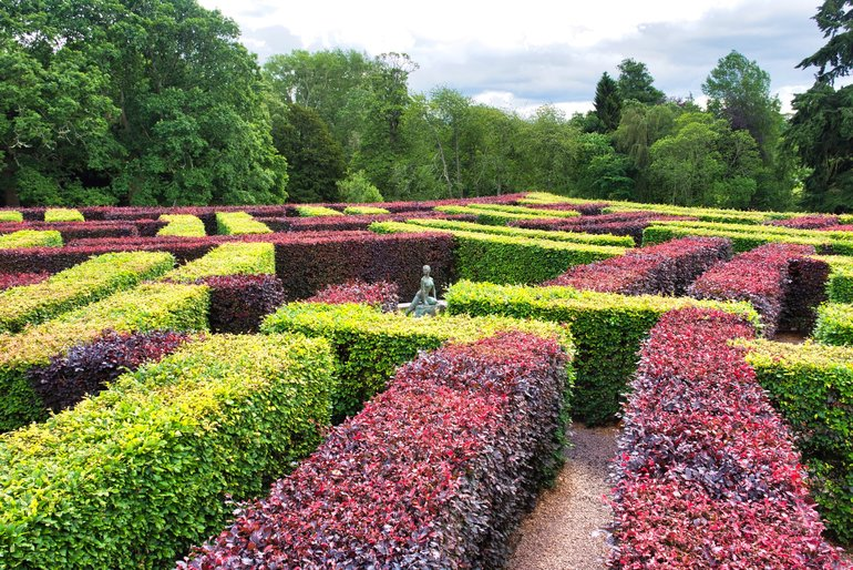 Test yourself in the maze in the gardens