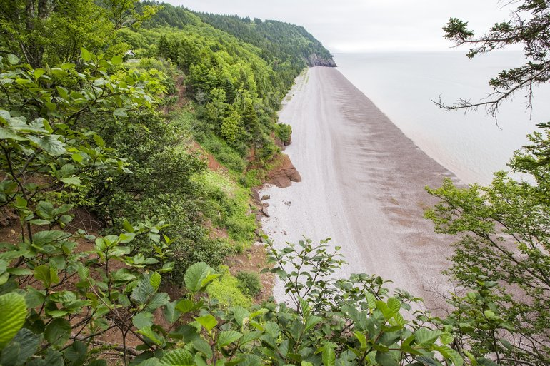Beach in Fundy Bay