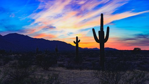 Valley of the Sun: A Self-Guided Road Trip Around Phoenix, Arizona