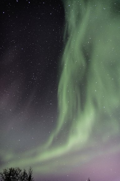 Looking up! Stars and northern lights.