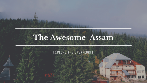 One Checklist That You Should Keep In Mind Before Visiting Assam!