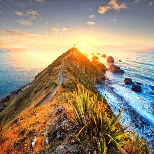 Wellness is the next big tourism trend in New Zealand