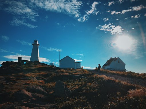 Newfoundland's Brews & Views