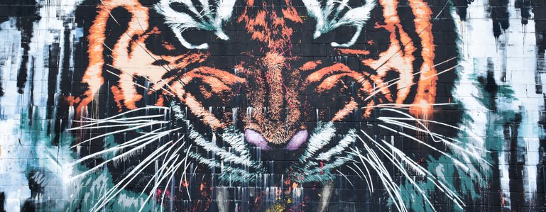 The Tiger mural on Canal street alongside the Clyde