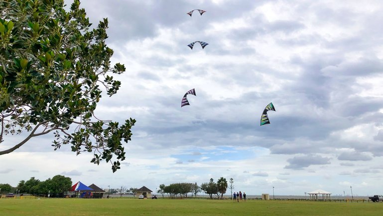 When the winds are blowing off Bramble Bay, this is a popular park to come and fly a kite