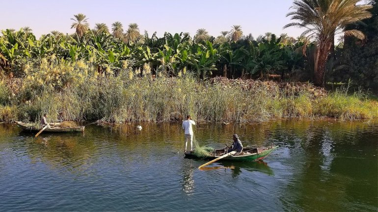 A typical morning scene along the Nile!