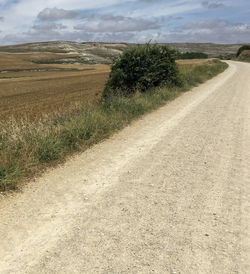 Walk Your Own Camino