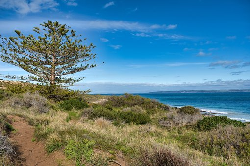 Best Things to Do in the Fleurieu Peninsula, South Australia