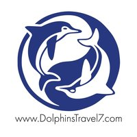 Dolphins_Travel7